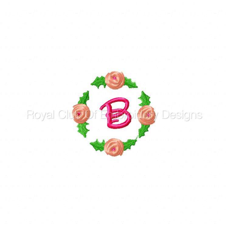rosebudalpha_03.jpg
