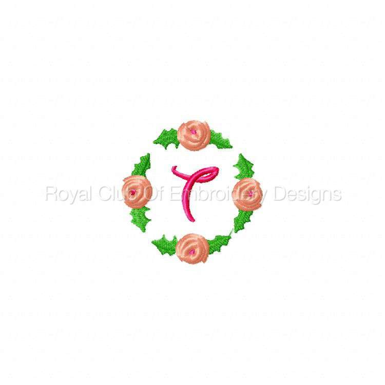 rosebudalpha_21.jpg