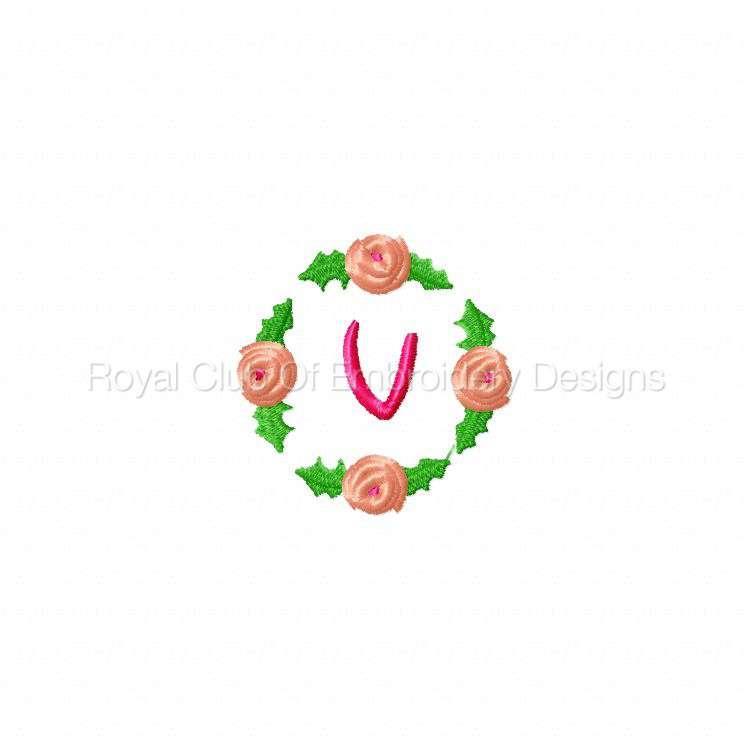 rosebudalpha_23.jpg