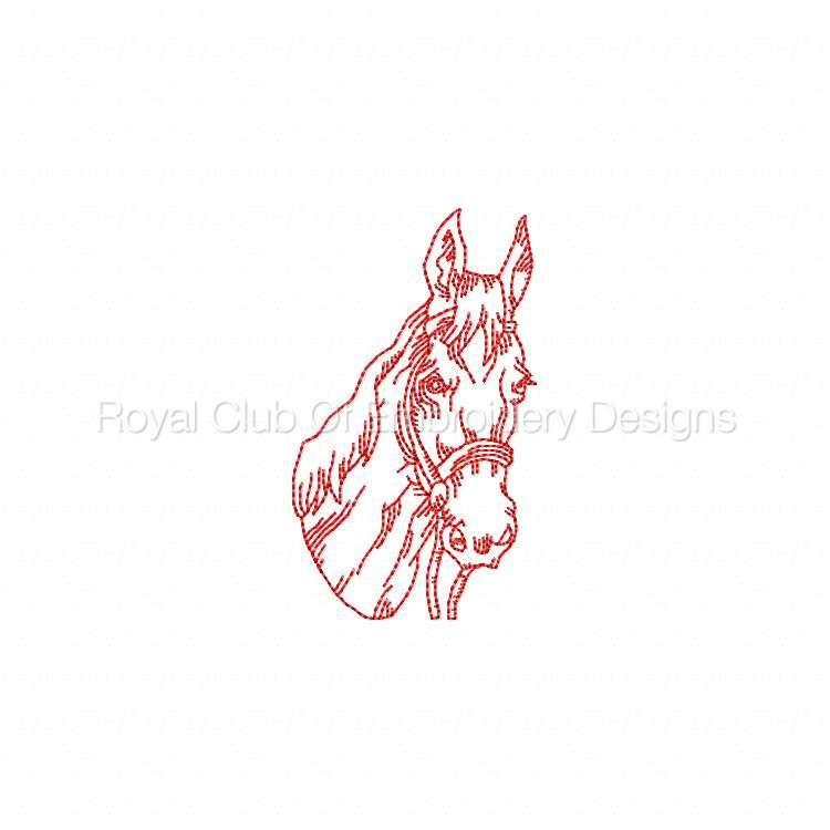 rwhorses_02.jpg