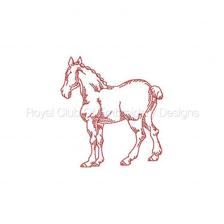 rwhorses_06.jpg