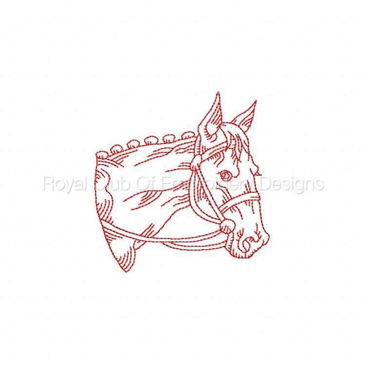 rwhorses_08.jpg