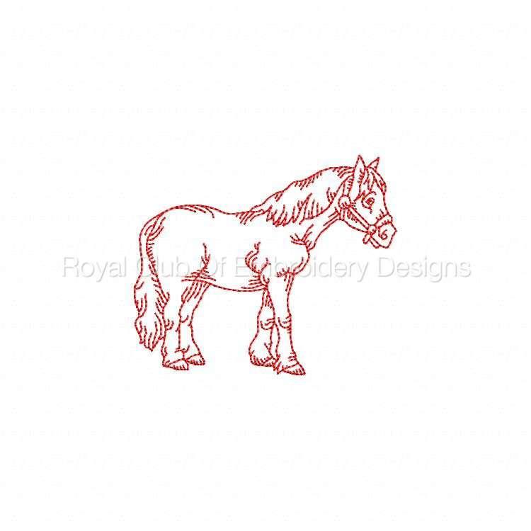 rwhorses_10.jpg