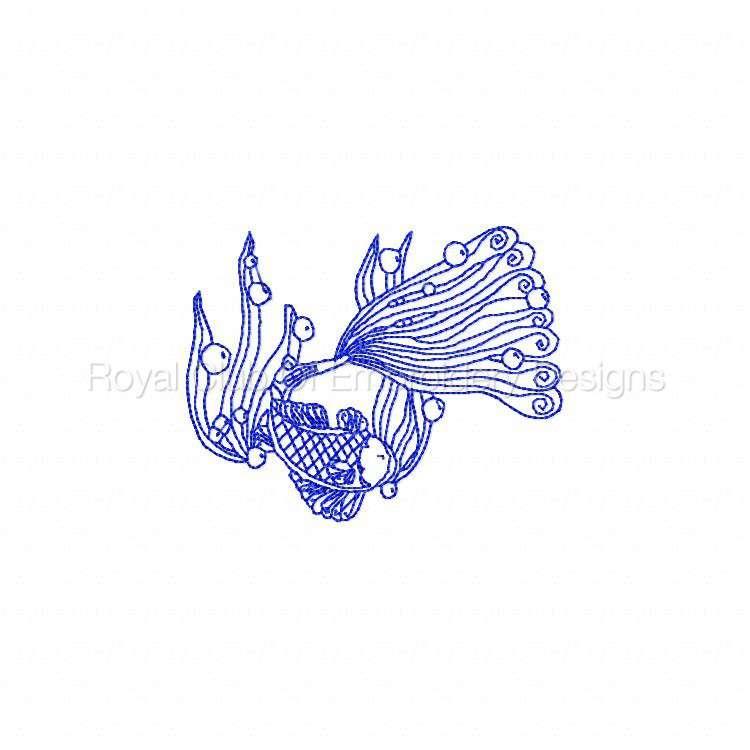 rwlacefish_05.jpg