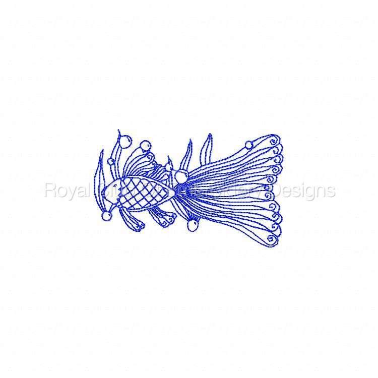 rwlacefish_06.jpg