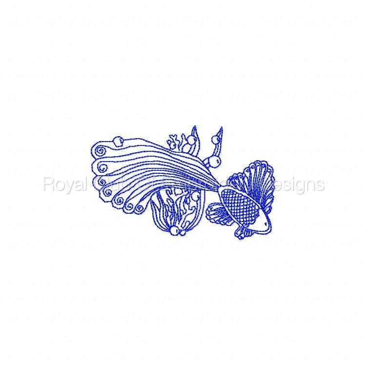 rwlacefish_10.jpg