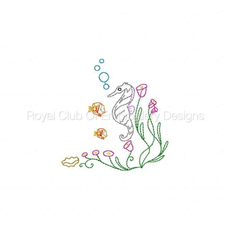 seahorses_01.jpg