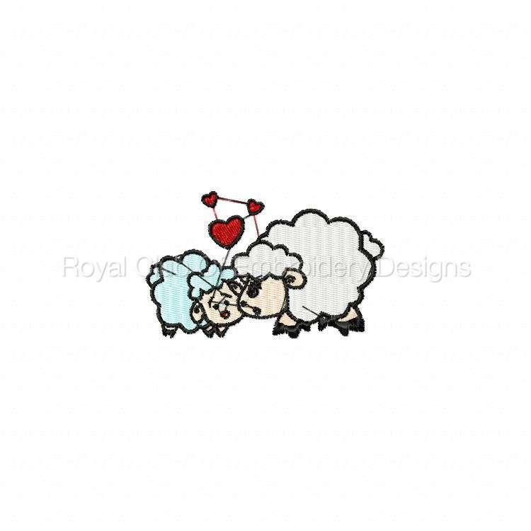 sheeps_12.jpg