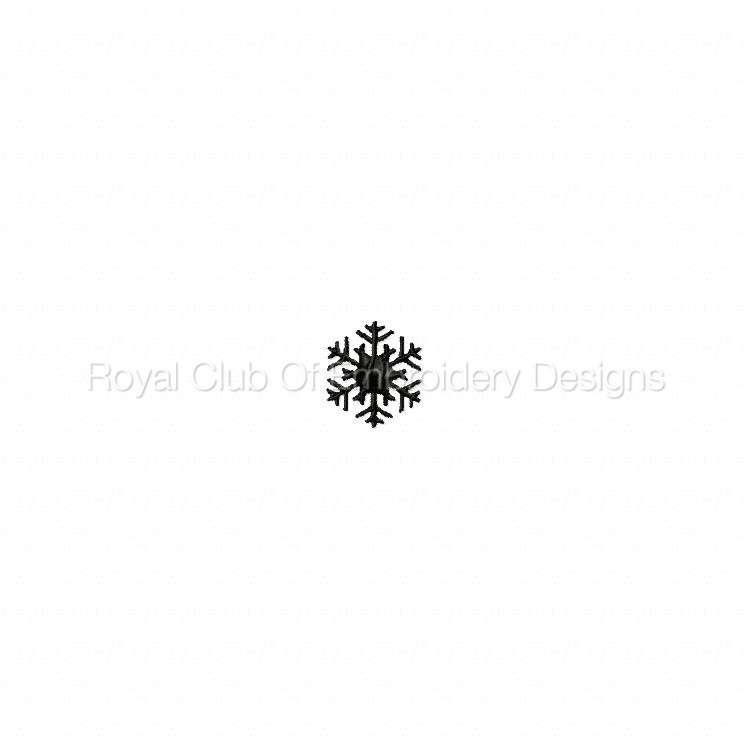 snowflakes_14.jpg
