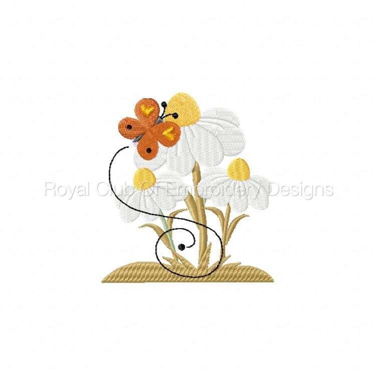 springcrow_11.jpg