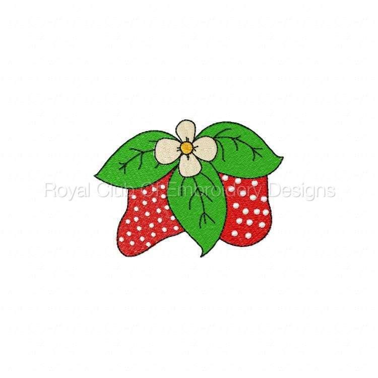 strawberryfun_06.jpg