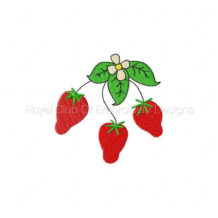 strawberryfun_07.jpg