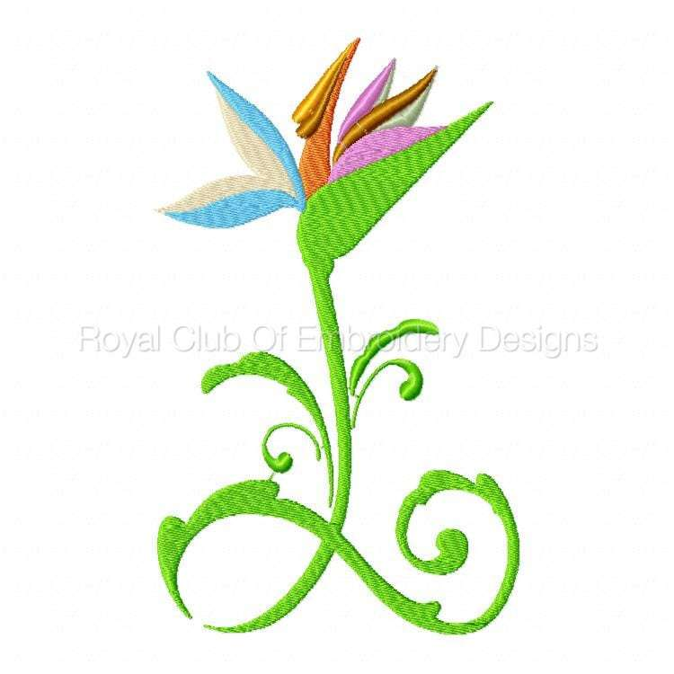 stylisedbirdsofparadise_04.jpg