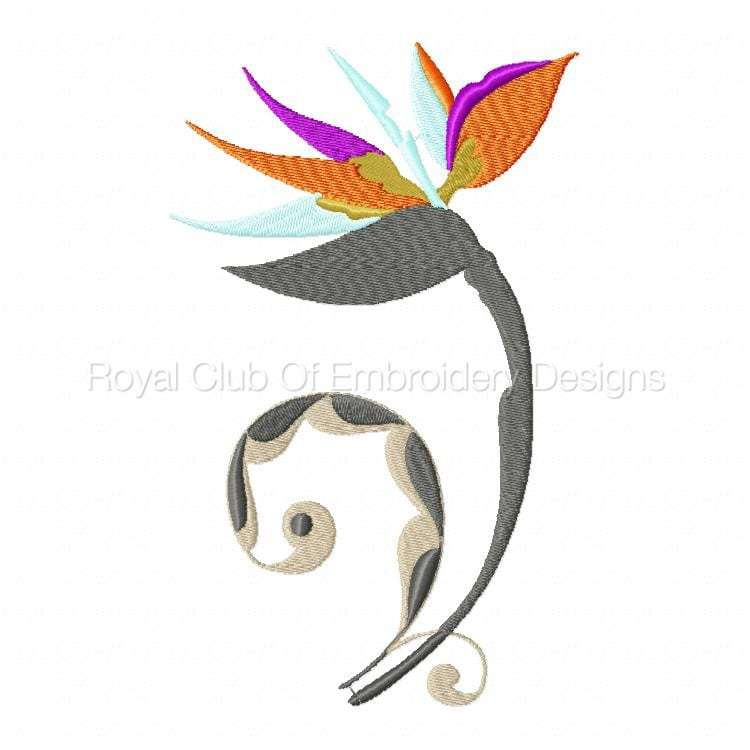 stylisedbirdsofparadise_08.jpg
