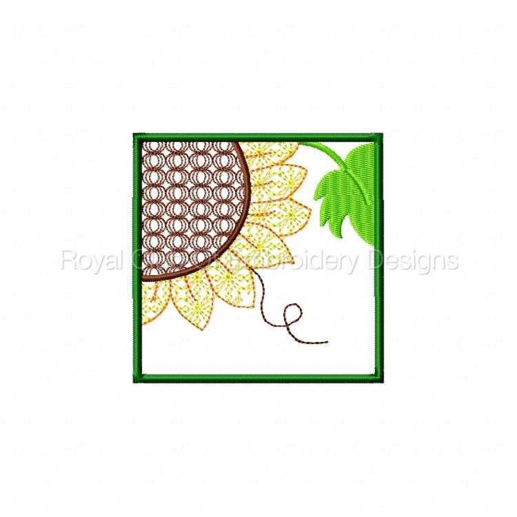 sunflowerhanging_02.jpg