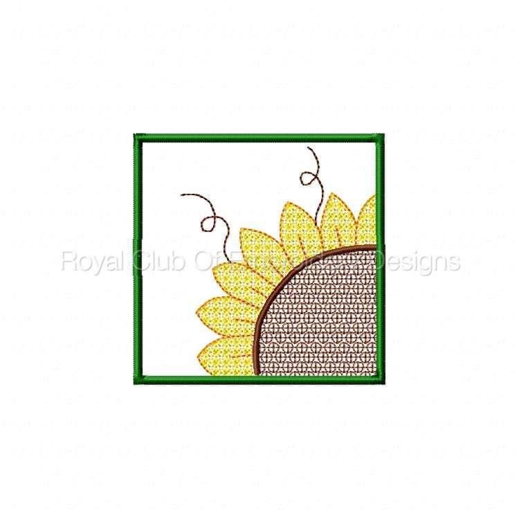 sunflowerhanging_03.jpg
