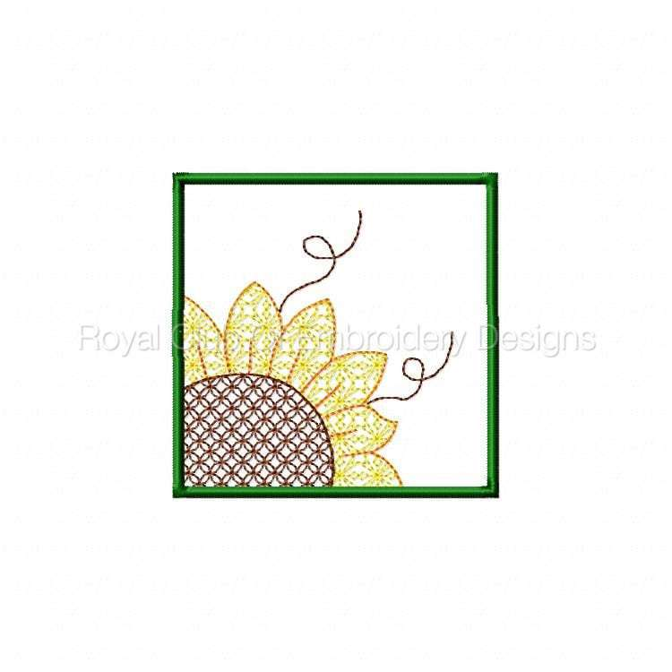 sunflowerhanging_04.jpg