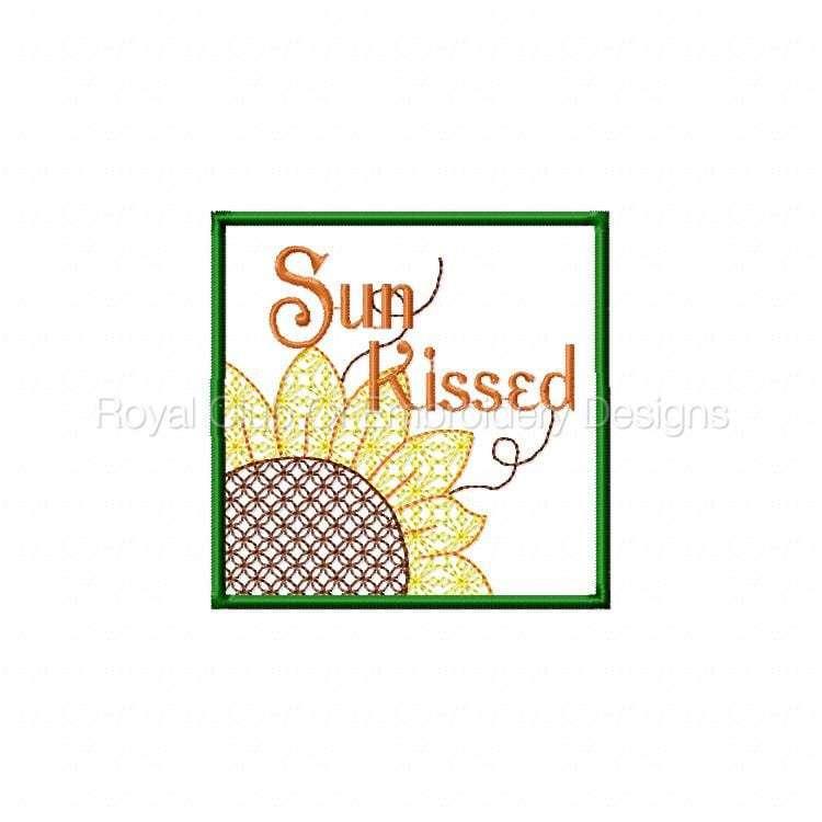 sunflowerhanging_10.jpg