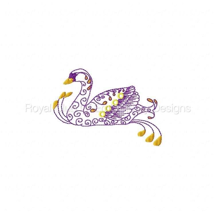 swans_03.jpg