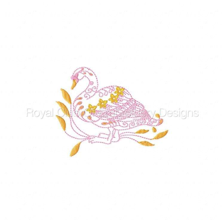 swans_09.jpg