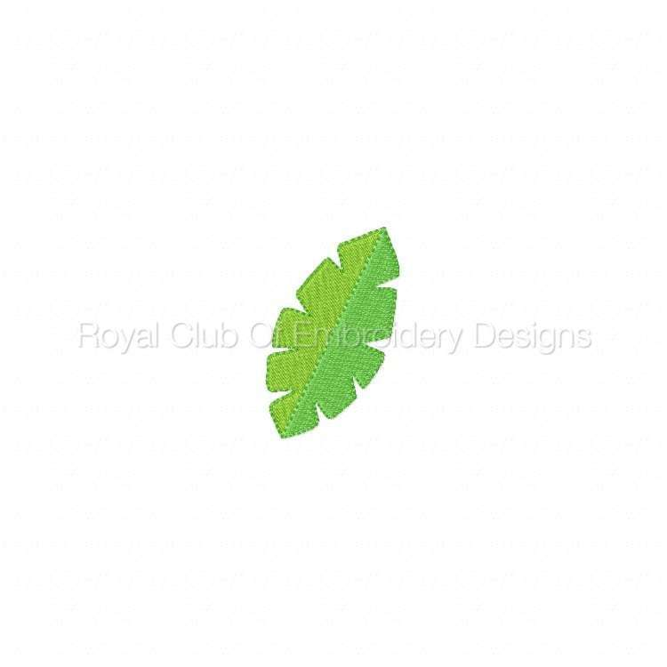 tropicaldesigns_07.jpg