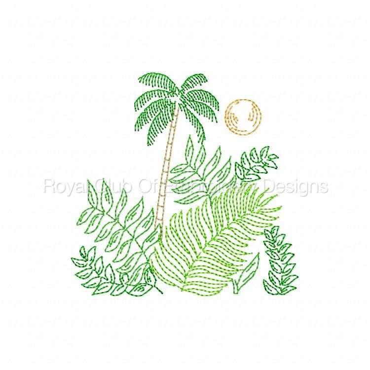 tropicalmc_10.jpg