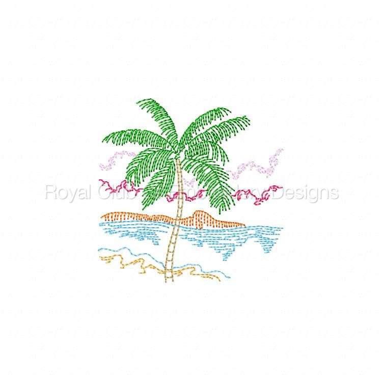tropicalmc_12.jpg
