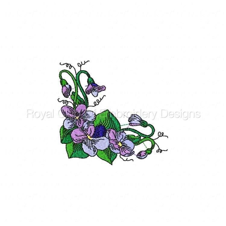 violetsandcorners_02.jpg