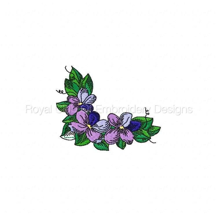 violetsandcorners_05.jpg