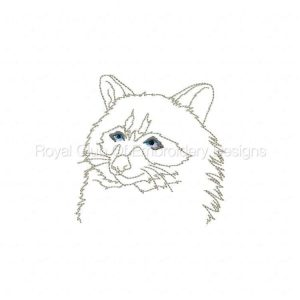 Royal Club Of Embroidery Designs - Machine Embroidery Patterns Wiley Raccoons Set