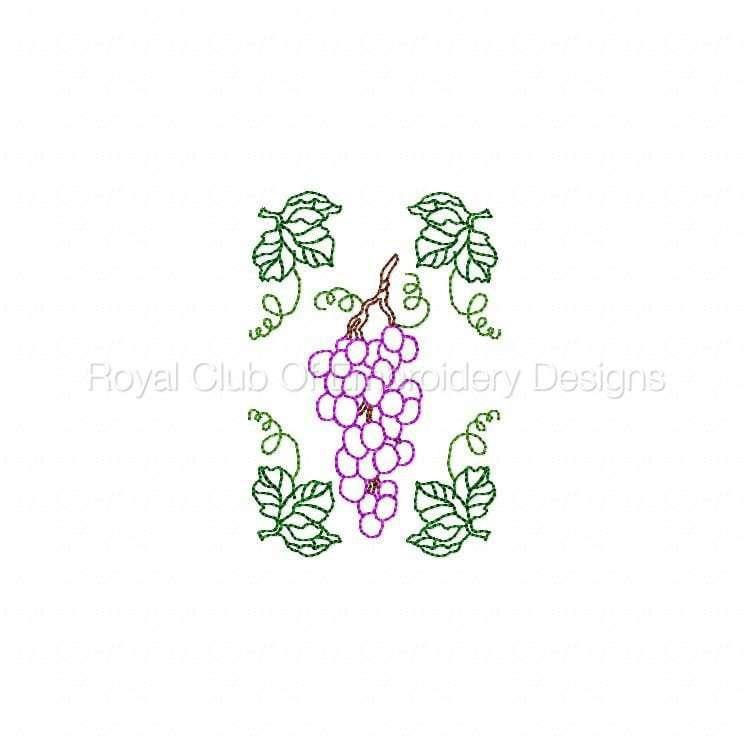 wine_13.jpg